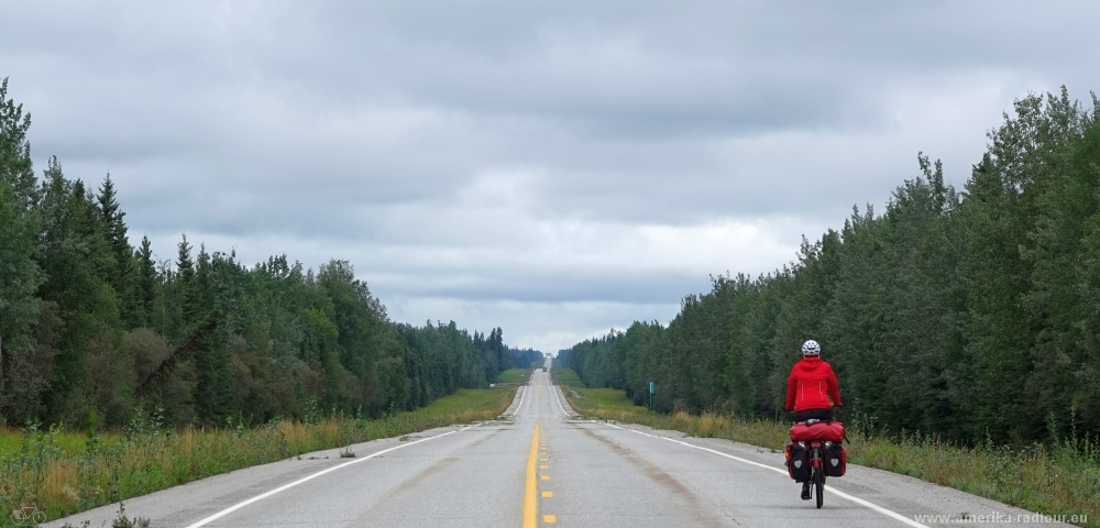 Cycling Alaska Highway northbound to Delta Junction.