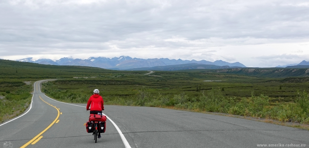 Cycling Denali Highway from Paxson to Cantwell.