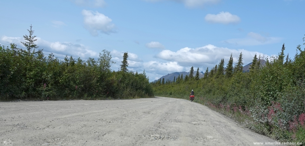 Cycling Denali Highway from Maclaren River to Cöearwater Lodge.